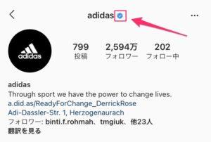 instagram profile screen11
